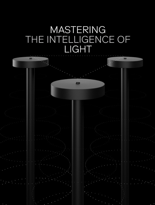 MASTERING THE INTELLIGENCE OF LIGHT 1